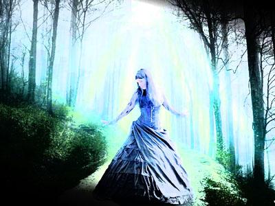 01 bosque