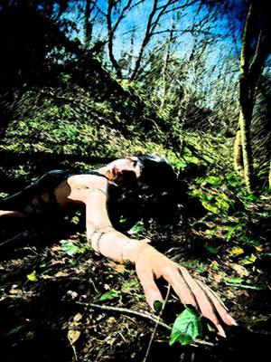 17 bosque cuerpo